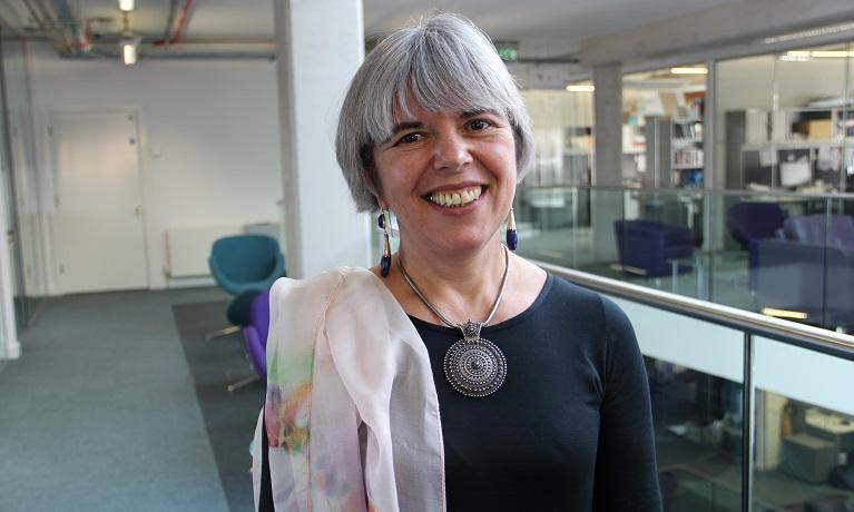 Professor Elena Gaura