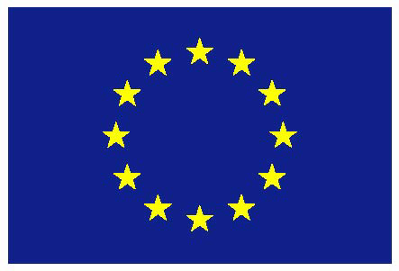 European Flag Logo