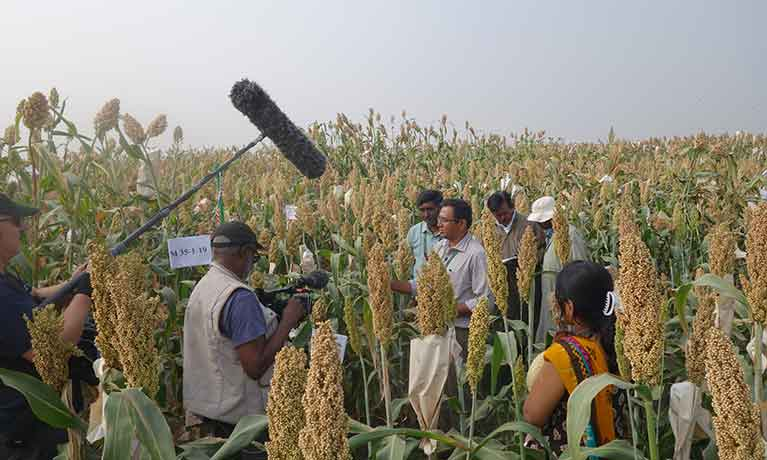 field-test-agroecology.jpg