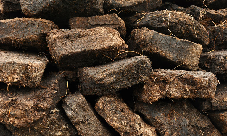 Coventry University research identifies what's holding the UK back in the move to peat-free horticulture