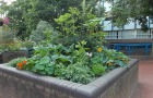 University's 'Edible Campus' gets special recognition from national scheme