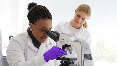 Applied Biosciences BSc (Hons)