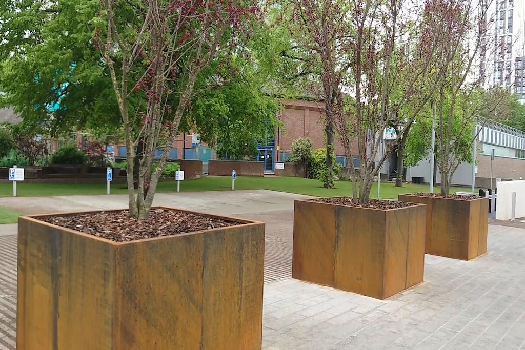 Starley Gardens